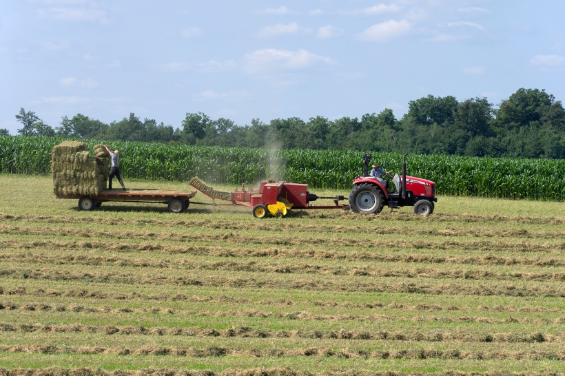 Bailing hay with tractor, baier and trailer